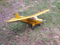 Name: Cub Right.jpg