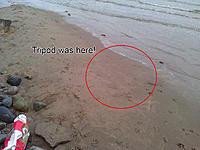 Name: WP_000262 copy.jpg Views: 80 Size: 281.2 KB Description: