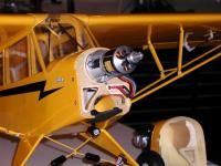 Name: Piper03.jpg