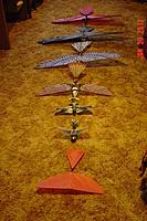 Name: Orni fleet 002.jpg Views: 72 Size: 188.4 KB Description: