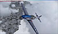 Name: Blue Nosed B.jpg Views: 25 Size: 119.9 KB Description: Blue Nosed B