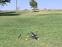 Name: d. 6-15-08 Heli- CP- Blade in grass traing balls.jpg