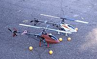 Name: h. 6-14-09  They Multiply -Tandem Critter Chppers.jpg