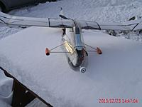 Name: 2013-12-23 03 Blkfoot on snow table-fnt-side-carrots.JPG