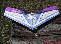 Name: pst1-2 2015-5-3 NOS-Wing 1 Bottom on picnic.JPG