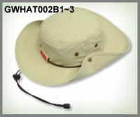 Name: gwhat002b.jpg Views: 209 Size: 29.5 KB Description: