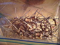 Name: SAM_0255.jpg