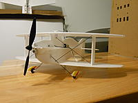 Name: DSCN2667.jpg