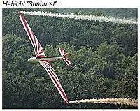 Name: Habicht_Struttin.jpg Views: 123 Size: 83.0 KB Description: Habicht 'Sunburst'