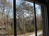 Name: IMGA0086.jpg Views: 78 Size: 113.4 KB Description: How big the tree is