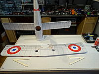 Name: DSC05256.JPG