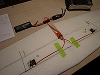 Name: DSC00184.jpg