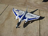 Name: DELTA RAY.JPG