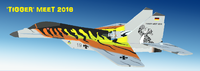 Name: Yardbird RC Mig29 Tigger meet 2016 000.png
