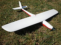 Name: P3140031.jpg