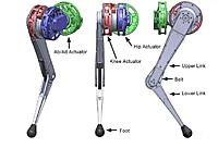 Name: robot-joint3.JPG