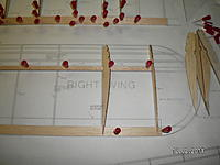 Name: SANY1442.jpg Views: 62 Size: 121.3 KB Description: Star by pinning the main spar in place straight and true with the plan. Then pin the trailing edge using the ribs for alignment.