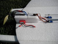 Name: Snowball 9-08 007.jpg