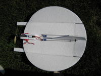 Name: Snowball 9-08 006.jpg