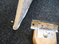 Name: Snowball 9-08 039.jpg