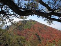 Name: IMG_3184.jpg Views: 608 Size: 182.8 KB Description: The beautiful mountains of Utah with the fall colors.