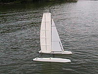 Name: Wingsail Cat Photo.jpg