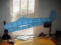 Name: IMG_6875.jpg