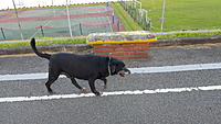 Name: 20180914_062138.jpg