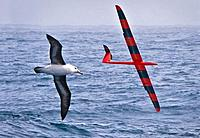 Name: glider navigation.jpg