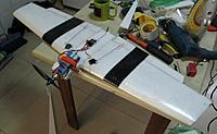 Name: Bobtail Plank 4.jpg
