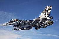 Name: Tiger Meet - F-16A Fighting Falcon of 31 Smaldeel, Belgian Air Force.jpg Views: 229 Size: 37.9 KB Description: 2011 Tiger Meet scheme. This would be a boatload of work!
