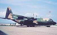 Name: AC-130  blind bat green camo.jpg