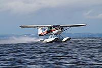 Name: flight (36).jpg Views: 33 Size: 106.0 KB Description: