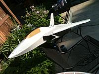 Name: New F-14 painted.jpg