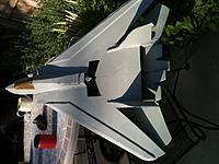 Name: New Tomcat dorsal.jpg Views: 194 Size: 116.0 KB Description: