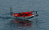 Name: 03 Trevor's Sealand Apr 07.jpg