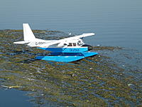 Name: 2012_07260002.jpg