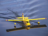 Name: DSCF8655.jpg