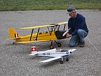 Name: Ron'sTigerMothandTurbulent.JPG