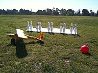 Name: Fun Cub Bowling.jpg