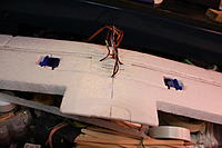 Name: IMG_5997.jpg