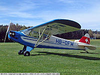 Name: real cub.jpg