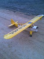 Name: cub right side.jpg