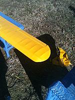 Name: Cub Cover1.jpg