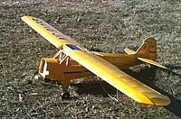 Name: Cub Cover3.jpg
