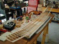 Name: Wing-03Aug06A.jpg
