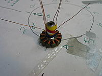 Name: IMG_6954.jpg