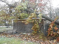 Name: DSCN1810.jpg