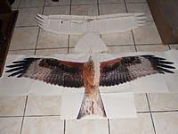 """Name: bird type glider prototype.jpg Views: 258 Size: 39.3 KB Description: the prototype during its build next to a scale 1 picture of the """"red kite"""" which is the final project i wanna build"""
