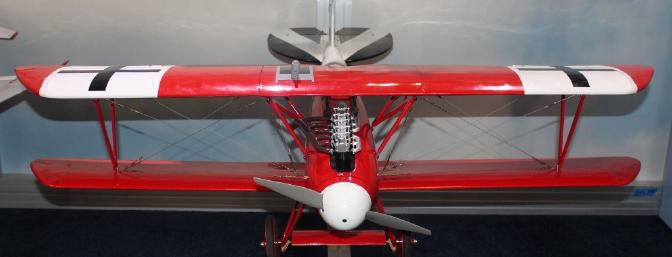 I went hoping to see the new E-flite Albatros and here she is.